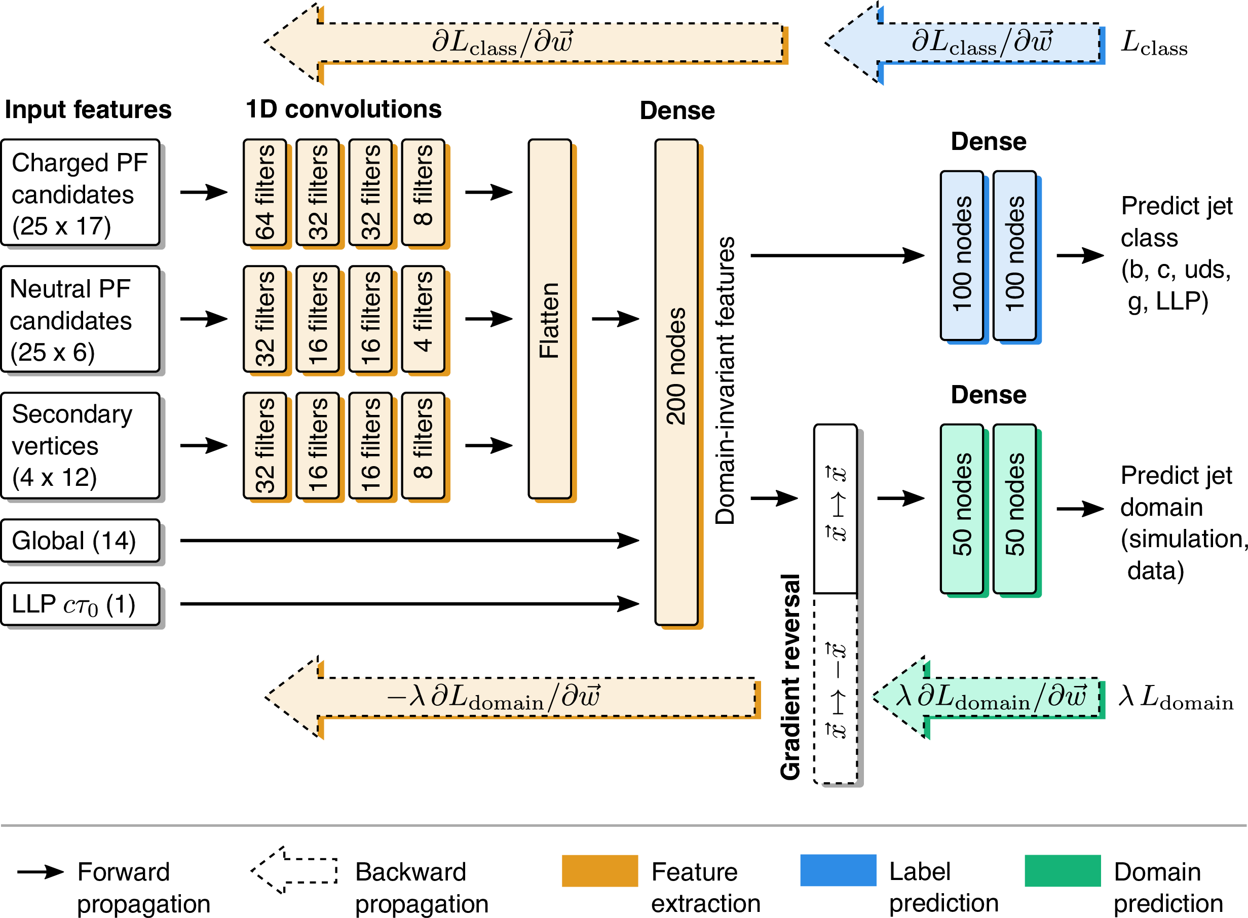 Schematic of the network architecture